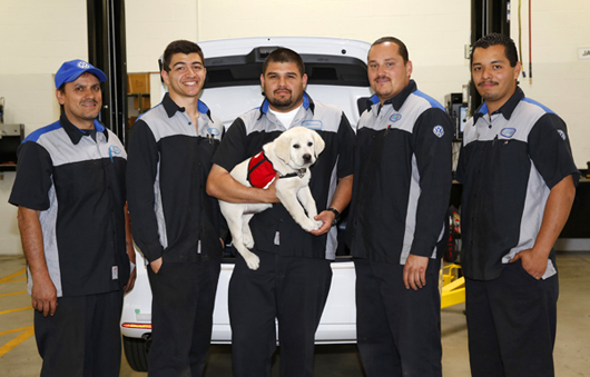 Jetta visits with the technicians at Volkswagon Kearny Mesa.