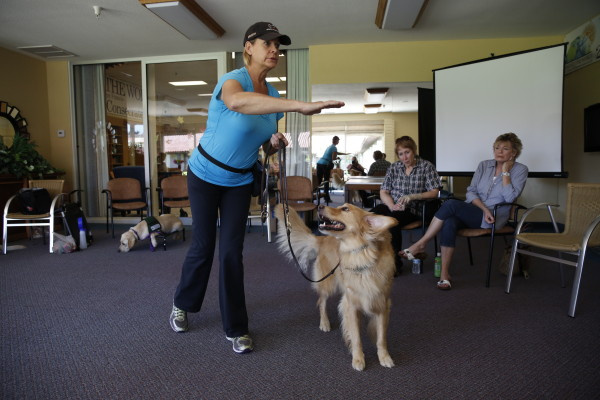 Mary Kay works with Dancer to improve Dancer's attention during walks.